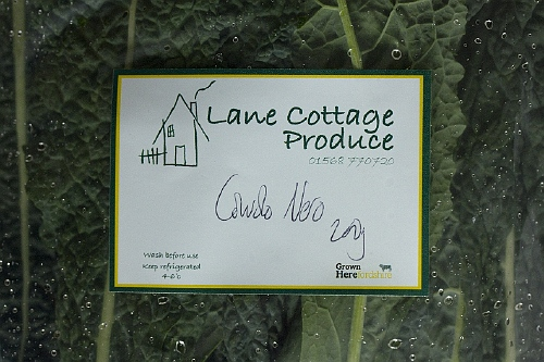 lane cottage1
