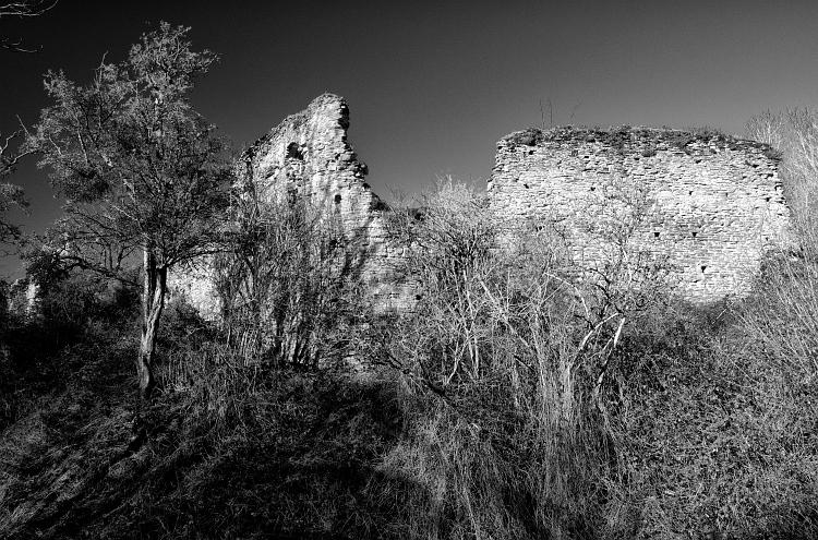wigmore castle walls bw1